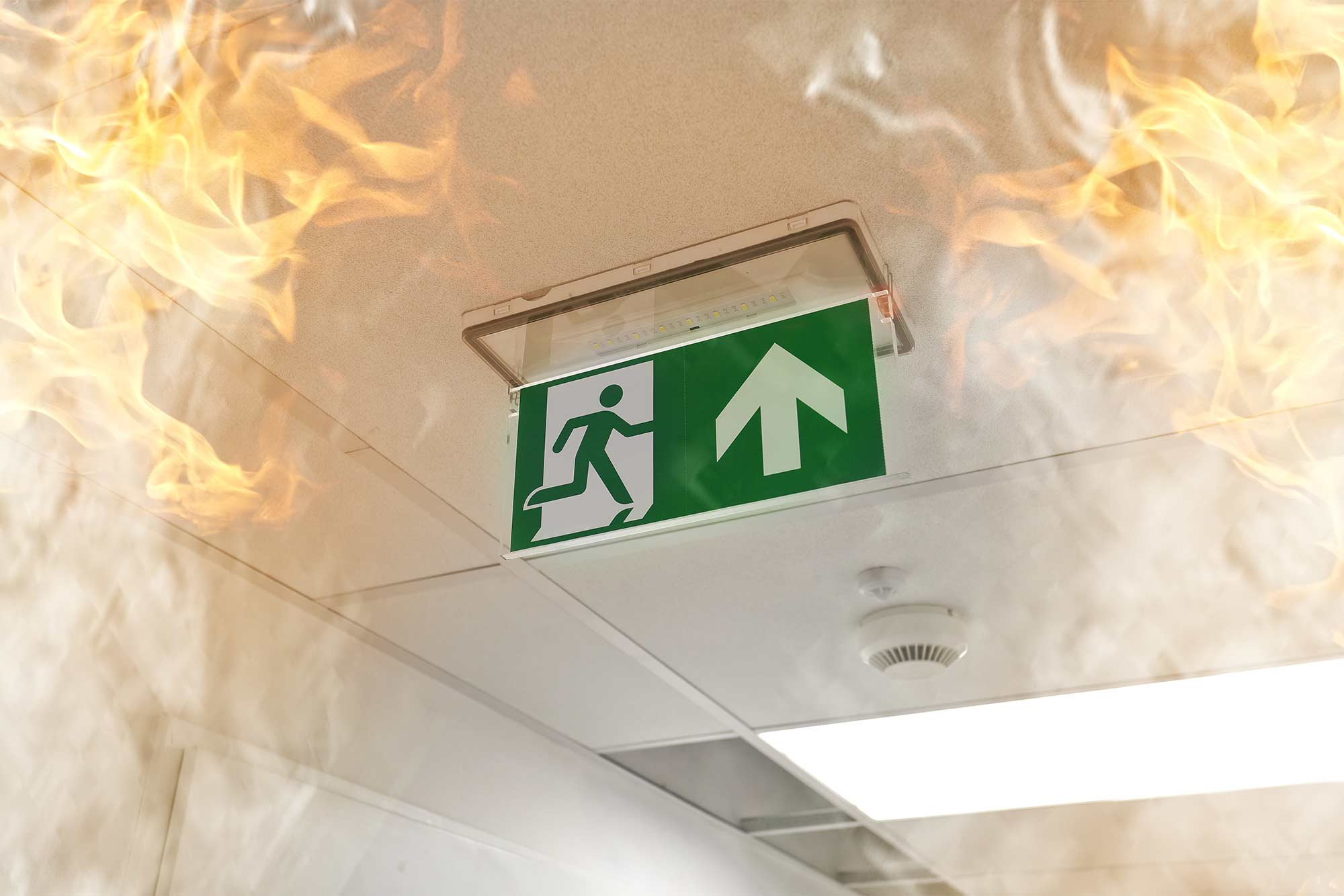 Get your Exit and Emergency lights checked with Checkmate Safety.